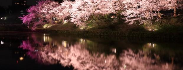 夜桜撮影に行く際の装備やカメラの設定のポイント