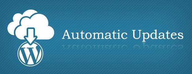 WordPressのオリジナルテーマ(プラグイン)を公式ディレクトリ以外から配信する方法