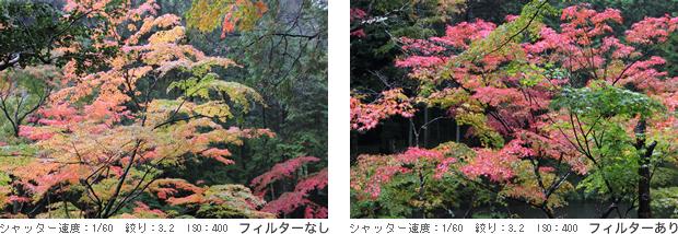 20141218_blog_001a