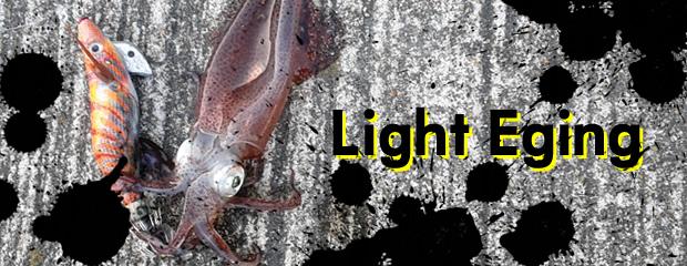 仕事帰りに博多湾でイカ釣り!超初心者でも釣れるライトエギングのすすめ