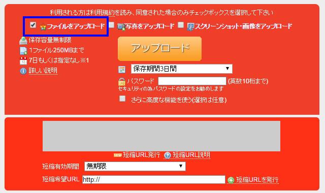 「ファイルをアップロード」にチェックを入れると、下にアップロードボタンと設定が表示