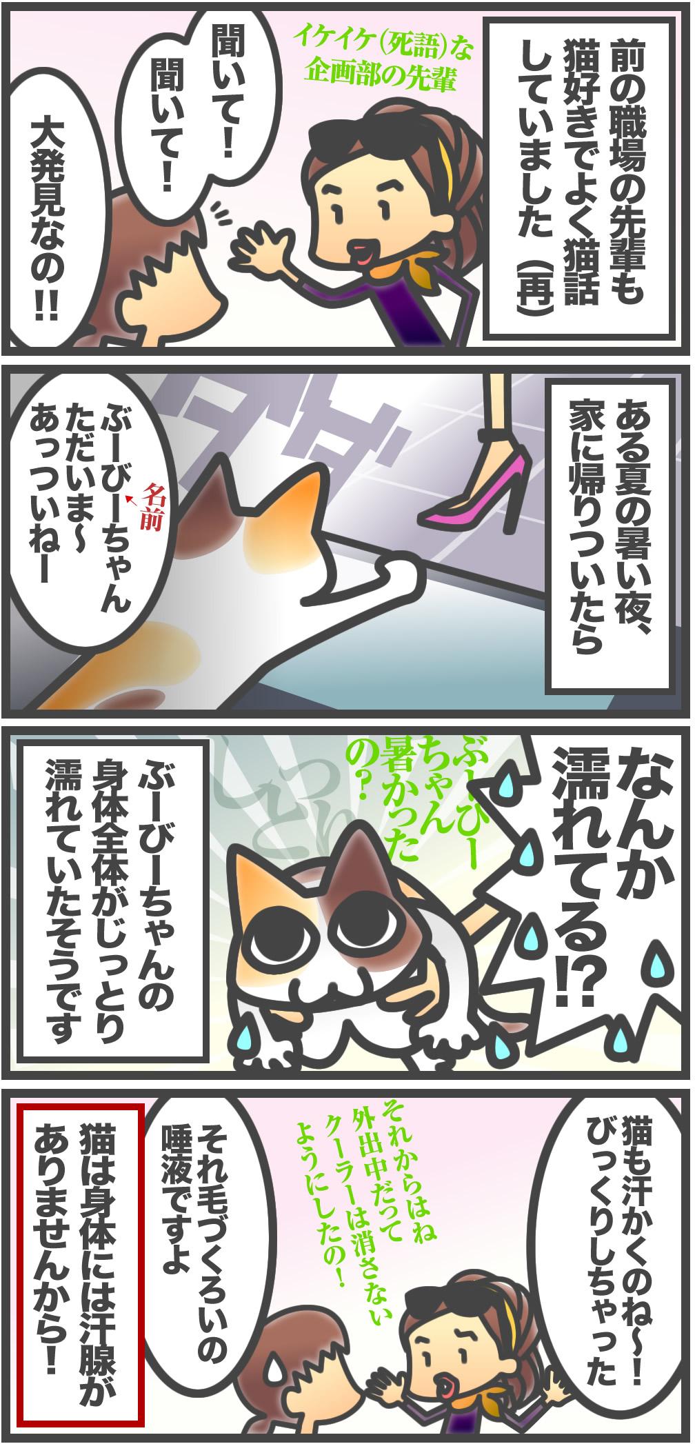 ブログまんが10 - 先輩の猫は汗をかく